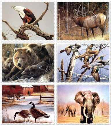 Animals and Nature Artworks
